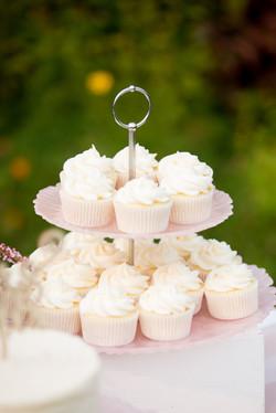 Okanagan Micro Wedding 2020 (7)