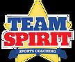 team-spirit-512.png