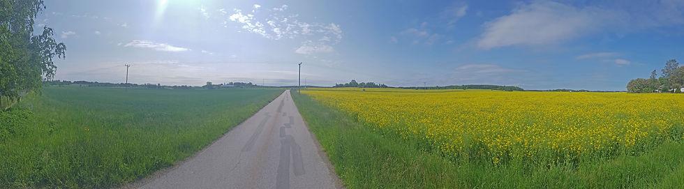 naturbild 9.jpg