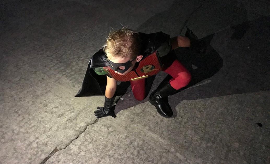 New Robin.jpg