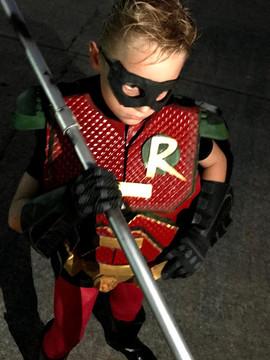 New Robin 02.jpg