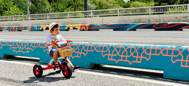 Shoreham Cycle Track by StreetARToronto (Toronto, Canada) 2020