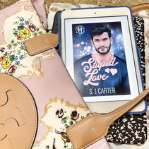 ARC Review: Stupid Love by SC Carter