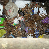 STOPPIT_garbage in catch basin.jpeg