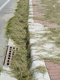 STOPPIT_grass-clippings-storm-drain.jpg