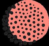 Logo-1571374708885_edited.png