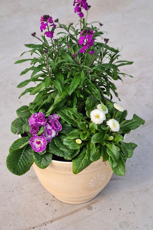 Spring Planter 02