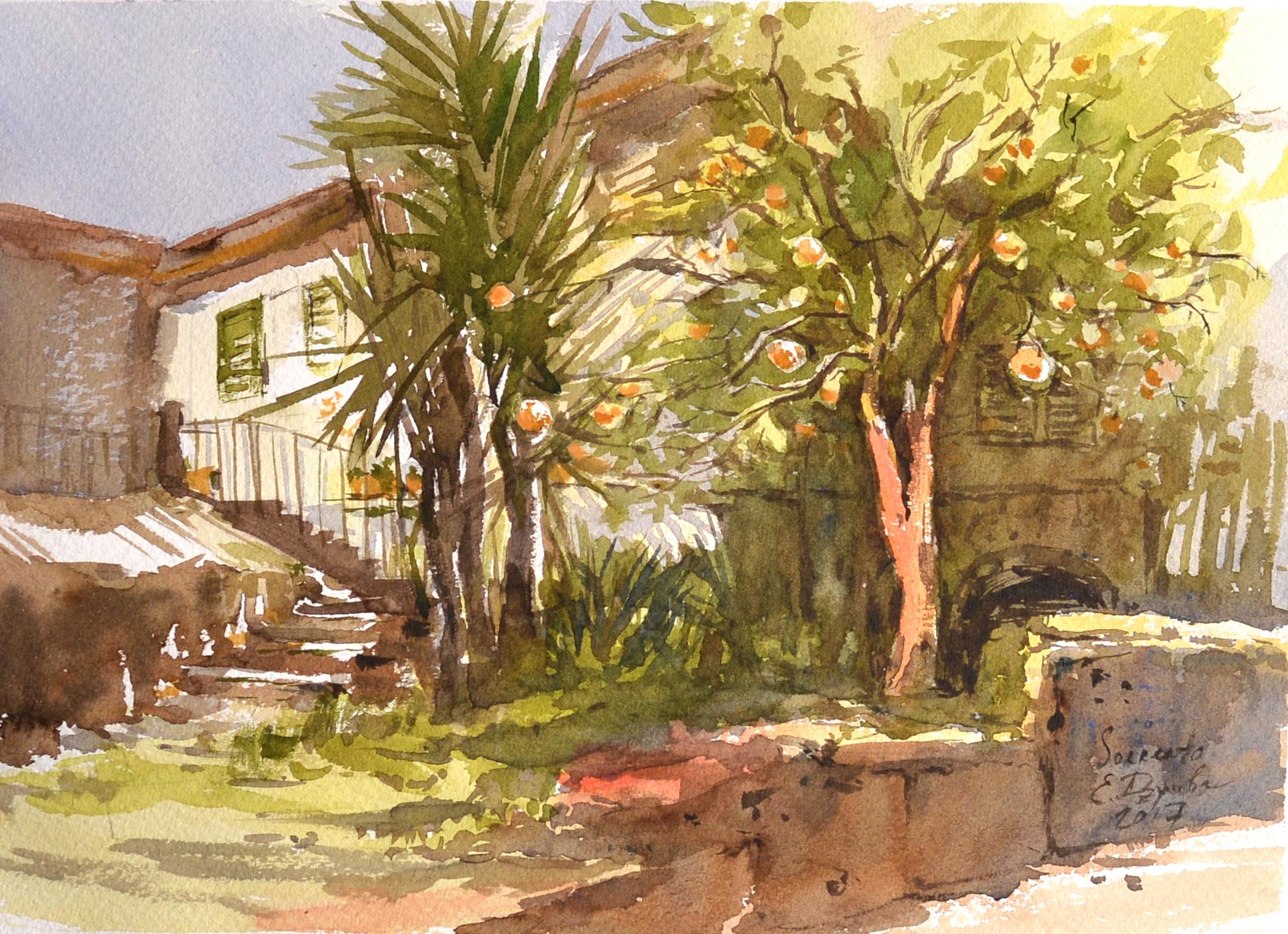 Лимонный сад, дом Сальваторе