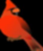 cardinal-150253_960_720.png