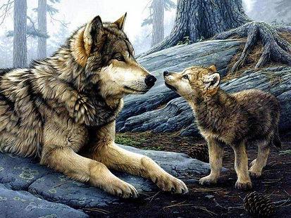 La méthode naturelle est fait sur l'observation des loups sauvages