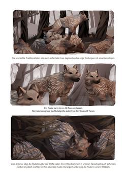 Der Wolf Seite 13