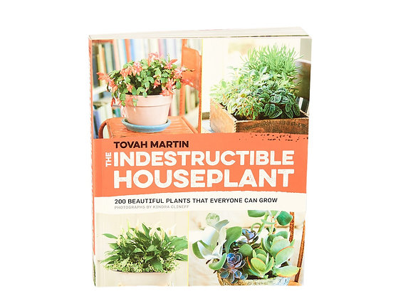 'The Indestructible House Plant'