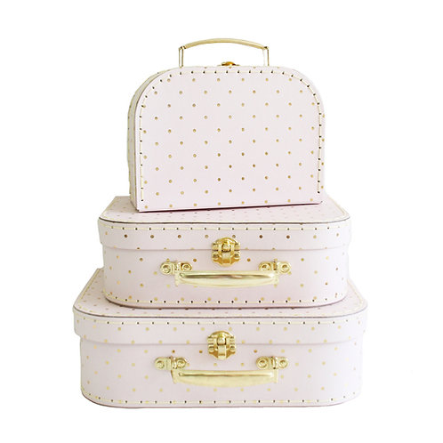 Pink Gold Carry Case Set