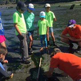 Clam Digging Kids.jpeg