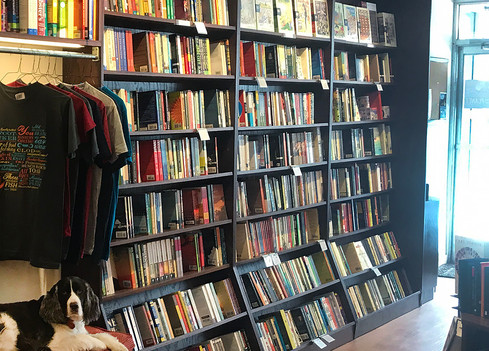 Bronx River Books_flared cases