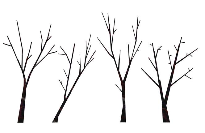 trees-2-2.jpg