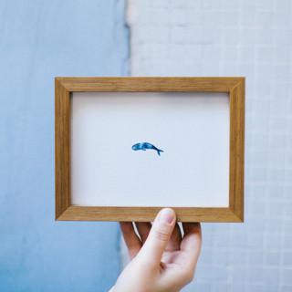 menor baleia do mundo