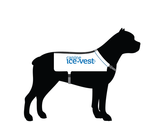 Original Vest - large