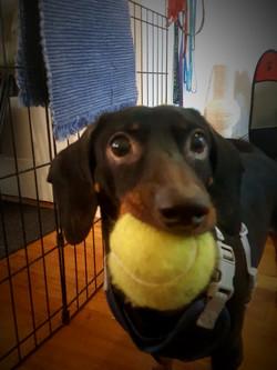 Bebu is ready to play ball