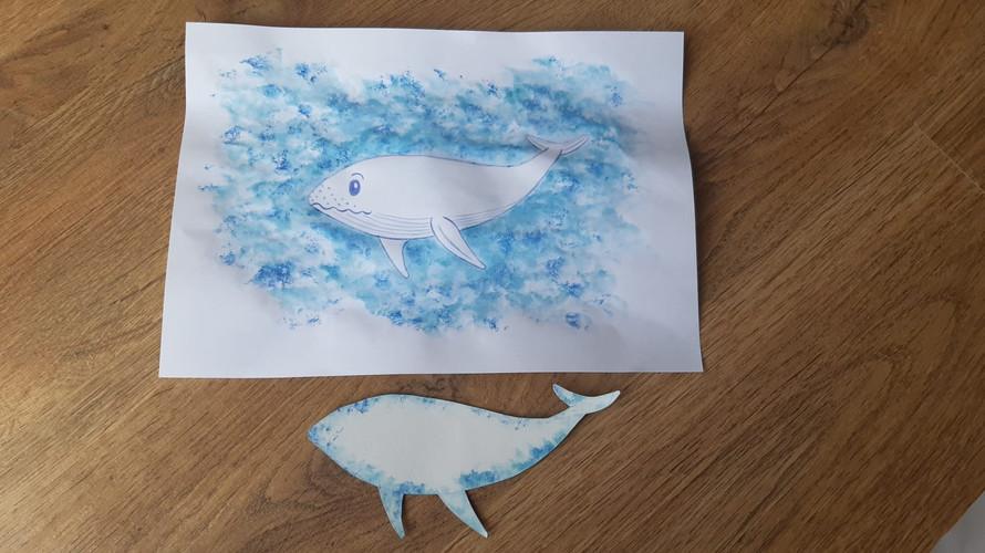baleia1.jpeg