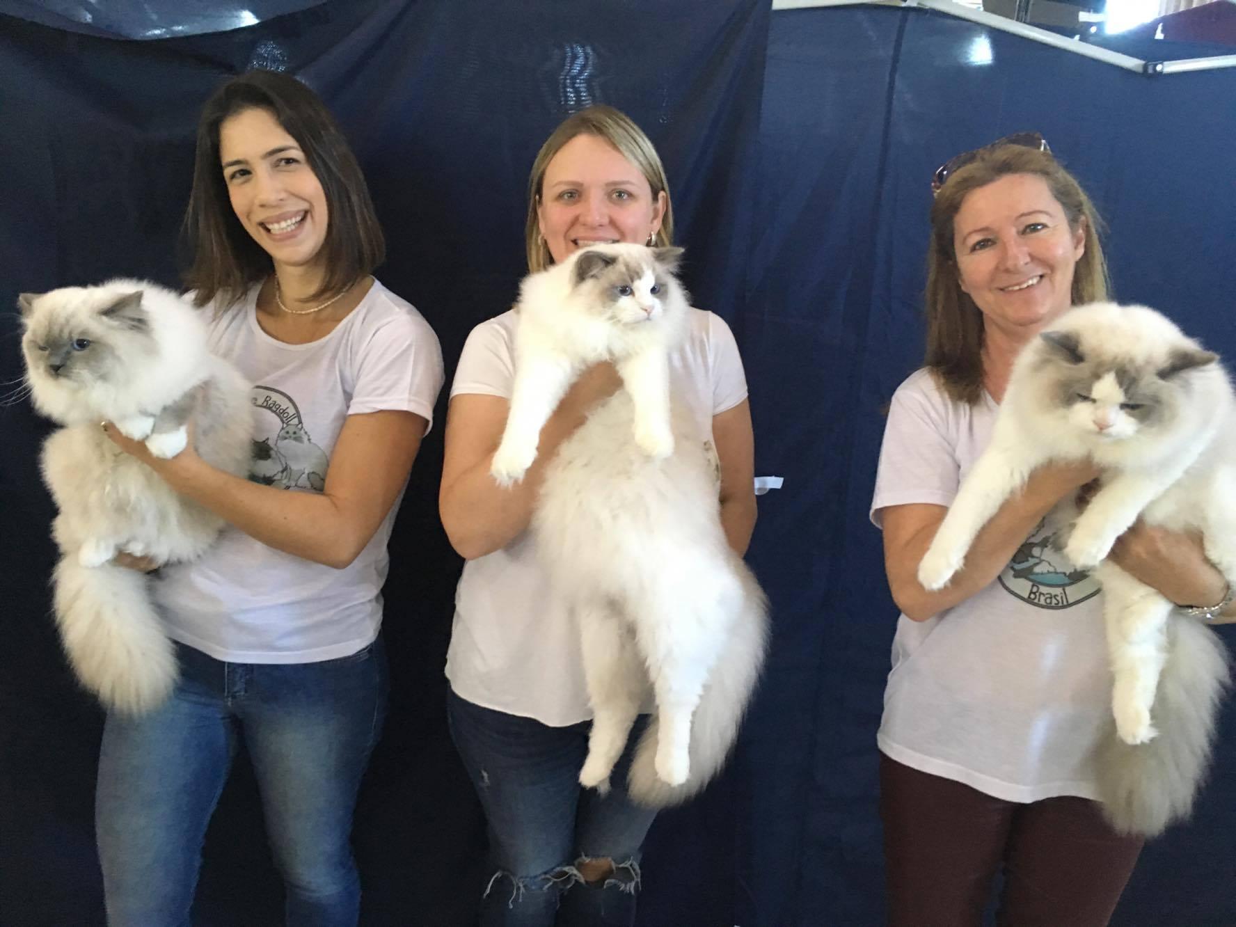 Julia, Carla e Ana