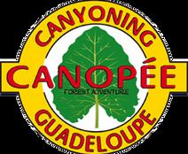 canopee