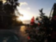 hibiscus sur le eck près de la piscine et jacuzzi