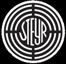 Steyr_logo.svg.png