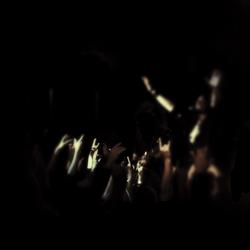 Wil Crowd_edited_edited