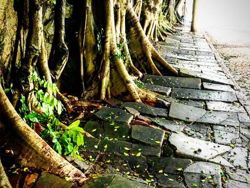 Caminhos Soterrados