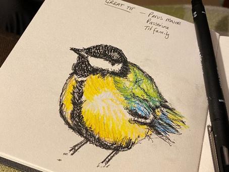 Big Garden Birdwatch 29-31 January 2021