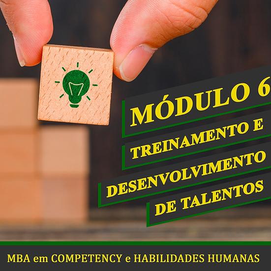 Módulo 6 - Treinamento e Desenvolvimento de Talentos - MBA em COMPETENCY e H.H.
