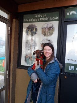 kinesiologia veterinaria
