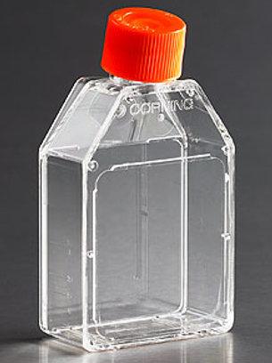 Botella de Cultivo 25 cm2