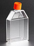 Botella de Cultivo 75 cm2