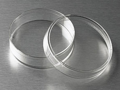 Placa Circular para Cultivo de 60 X 15 mm