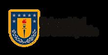logo_udec1.png