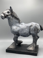Clydesdale Draught Horse
