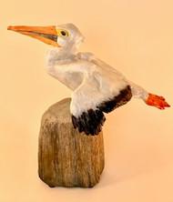 Pelican side view.jpgRecent.jpg