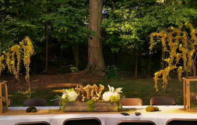 Enchanted Forest Wedding Reception