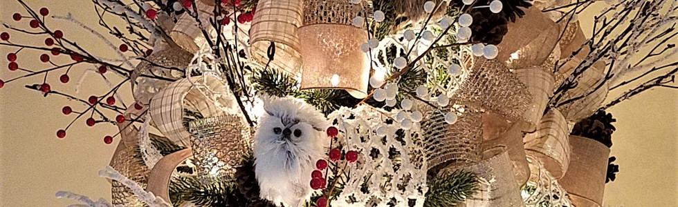 Woodsy Owls