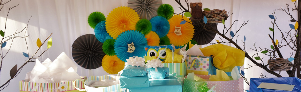 Owls in the Woods Baby Shower