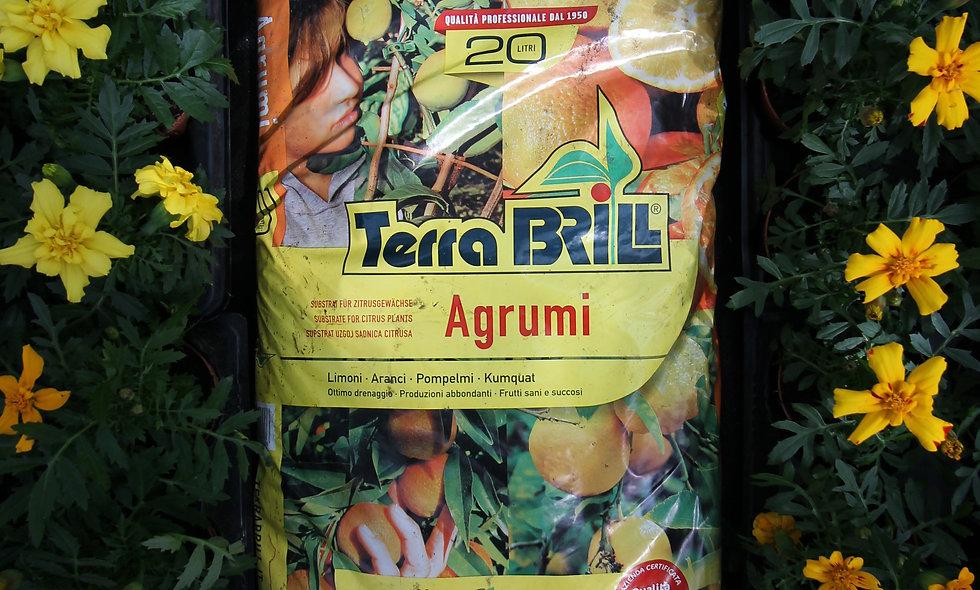 Terriccio Agrumi - varie misure