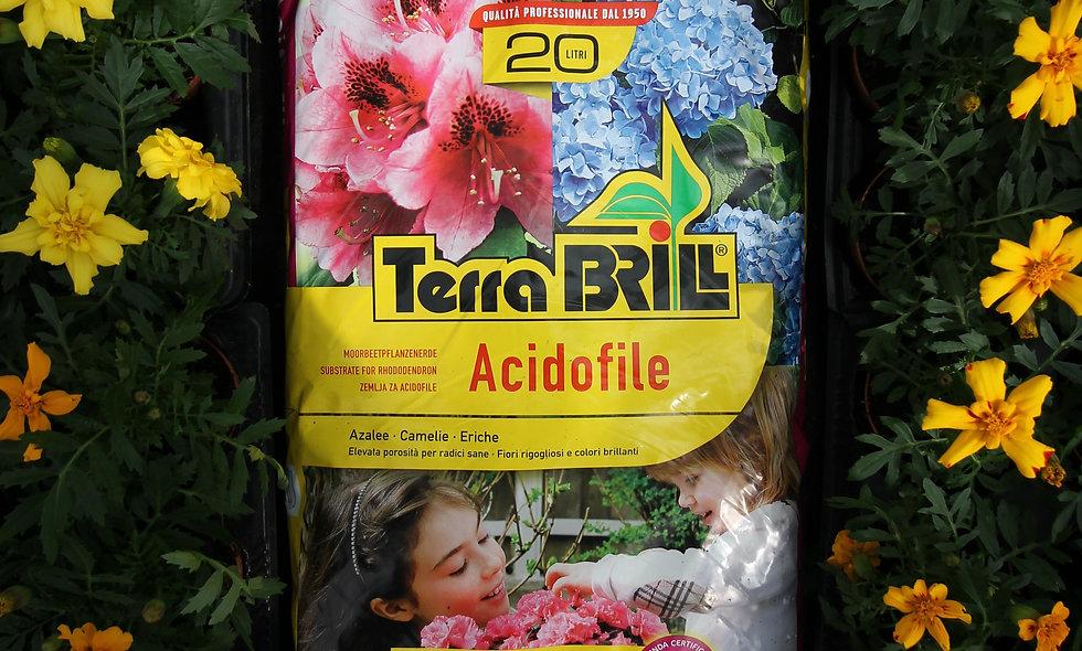 Terriccio Acidofile - varie misure
