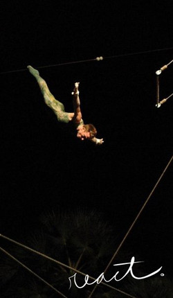 Flying Trapeze Dive