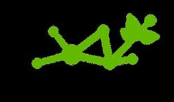 metacarbon-logo.png