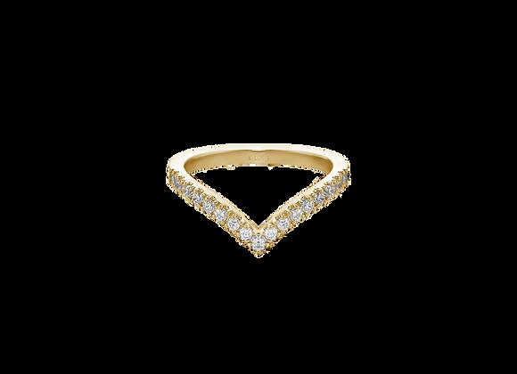 V Guard Ring