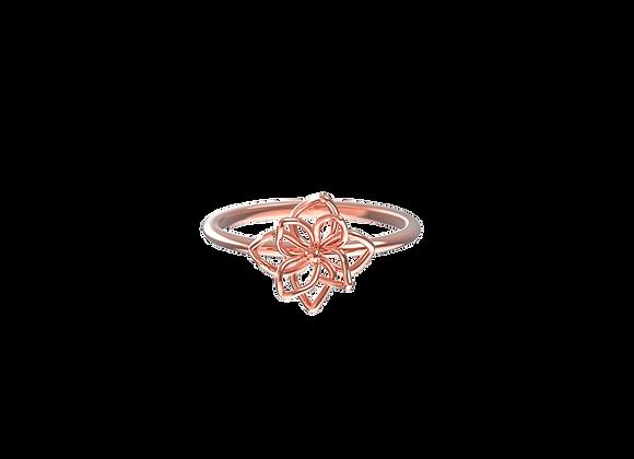 Harmonia Line Ring