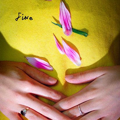 Rosehip Teahouse - Fine EP cover