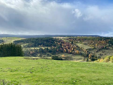 Margeride environnante à quelques kilomètres de Châteauneuf-de-Randon